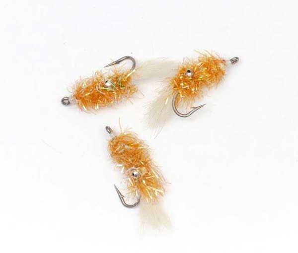 Bild på Cactus Shrimp Gold #6