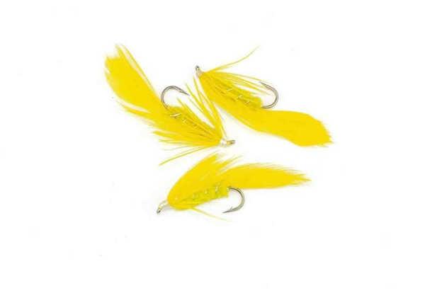 Bild på Matuka Yellow #8