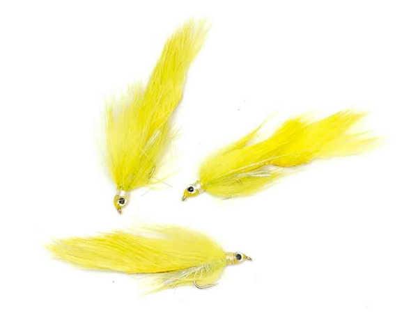 Bild på Zonker Yellow #8