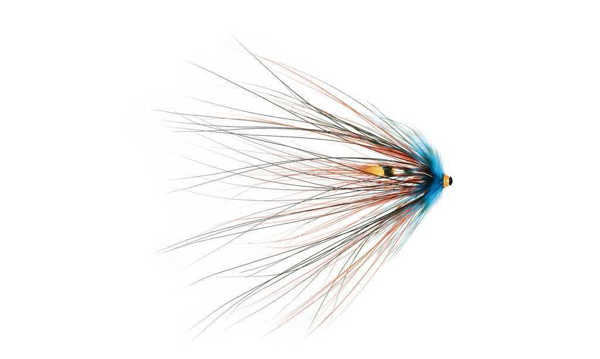 Bild på Frödin Sea Trout Spey Series (3cm) Black Doctor
