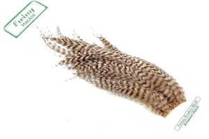 Bild på Ewing Saltwater Streamer Patch Grizzly